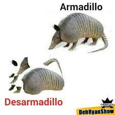 Armadillo Meme - dopl3r com memes armadillo desarmadillo debryanshow