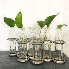 Indoor Garden Decor - nine glass bottle vase plant propagation metal rack industrial
