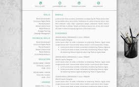 cute resume templates cute resume templates free programmer cv
