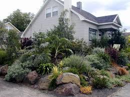 native drought tolerant plants case study u2013 native garden u2013 creative landscapes inc