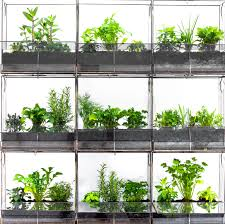 wall mounted herb garden angles earth terrariums