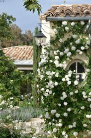 195 best gardens and flowers images on pinterest formal gardens