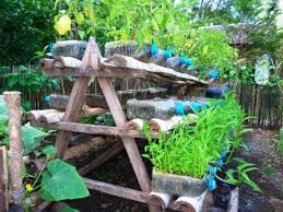 Gardening Ideas For Small Spaces Gardening Small Spaces
