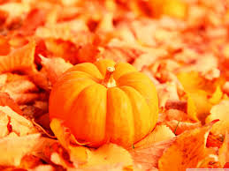 jackolantern screensavers autumn pumpkin wallpaper wallpapers gallery