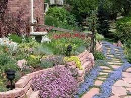 Creating A Rock Garden Best Plants For A Rock Garden