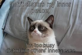 Inner Peace Meme - im busy quickmeme