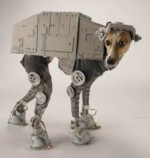 Small Puppy Halloween Costumes 25 Large Dog Halloween Costumes Ideas