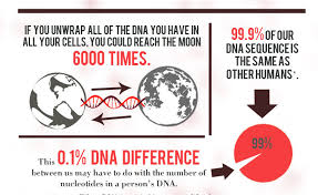 17 interesting facts about dna holy kaw
