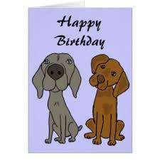 weimaraner birthday cards greeting photo cards zazzle