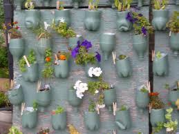 herb garden and bottle wall thora u0027s blog
