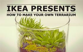Ikea Cylinder Vase Make Your Own Terrarium Ikea