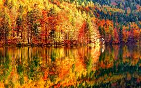 autumn wallpaper hd wallpapers browse