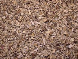 Sweet Flag Herb Herb Magic Catalogue Calamus Root Chips