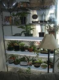 the indoor garden er u0027s setup the homestead hobbyist