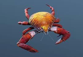 424 best 3d zbrash images on pinterest creature design alien