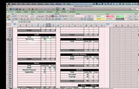 Meal Plan Excel Template Excel Nutrition Tracking Template