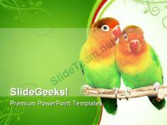 peacock animals powerpoint templates and powerpoint backgrounds