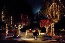 december in san francisco back of house
