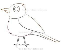 how to draw a cartoon robin