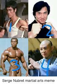 Martial Arts Memes - 25 best memes about martial arts memes martial arts memes