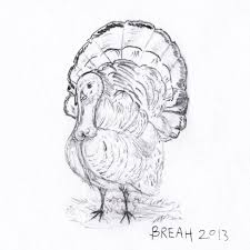 american turkey for thanksgiving by breah