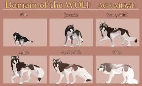Meme Wolf - age memes on domain of the wolf deviantart