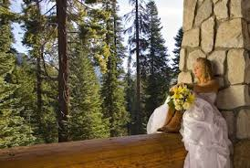 california weddings california weddings sequoia national park