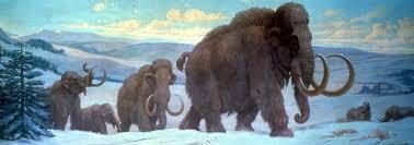 wooly mammoth snow campaign beast burden neverending winter