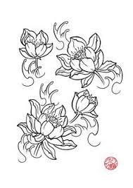 Lotus Flower Parts - best 25 lotus flower drawings ideas on pinterest lotus tattoo