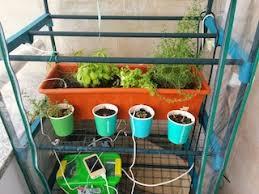 greenhouse u2013 diogo gomes