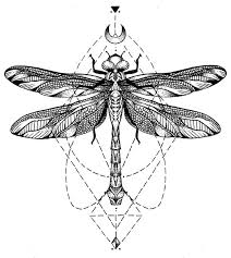 geometric dragonfly tattoo design