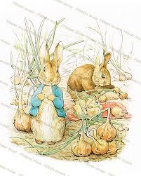beatrix potter rabbit nursery rabbit nursery decor beatrix potter prints rock a