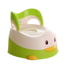 Potty Seat Or Potty Chair Best 25 Child Toilet Seat Ideas On Pinterest Natural Loofah