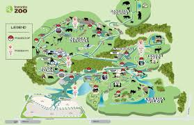 Map Of Pokemon World by The Toronto Zoo On Twitter