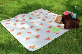 Outdoor Blanket Target by Diy Watermelon Picnic Blanket Within The Grove