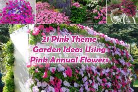 Garden Flowers Ideas 21 Pink Theme Garden Ideas Using Pink Annual Flowers Gardenoid