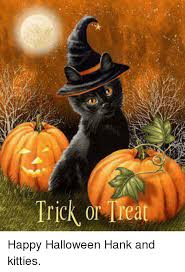 Happy Halloween Meme - trick or treat happy halloween hank and kitties halloween meme on