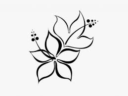 pictures simple pencil flower drawings drawing art gallery