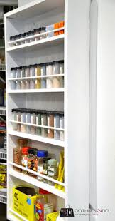 Slide Out Spice Racks For Kitchen Cabinets by Best 25 Door Mounted Spice Rack Ideas On Pinterest Spice Rack