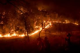 Wildfires California August 2017 by Wildfire Rips Through California U0027s Sierra Nevada Foothills The Blade