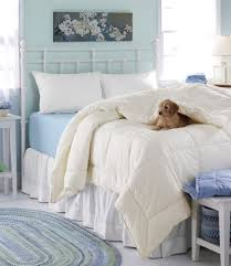 primaloft down alternative comforter warm window shopping for