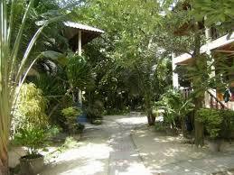 best price on koh tao tropicana resort in koh tao reviews