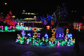 brewery lights fort collins top 5 christmas lights displays in fort collins pictures