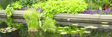 Nursery Plant Supplies by Pond Care Alsip Home U0026 Nursery