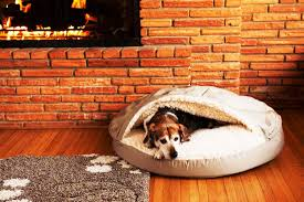 fancy luxury dog beds team galatea homes the most unique