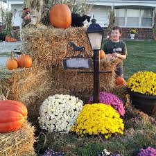 thanksgiving outdoor decorations how to decorate your yard for fall with mums cornstalks pumpkins