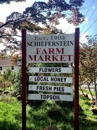 family tree garden center schieferstein farm market and garden center in clark nj cranford