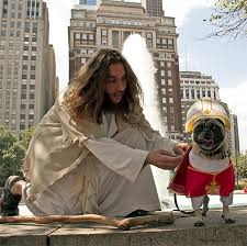 Jesus Costume Here Are Our Top 13 Dog Costumes For Halloween This Dog U0027s Life