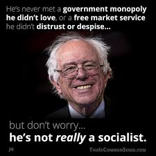 Central Meme - what kind of a socialist is bernie common sense with paul jacob