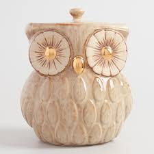 owl canisters for the kitchen white pineapple ceramic cookie jar world market